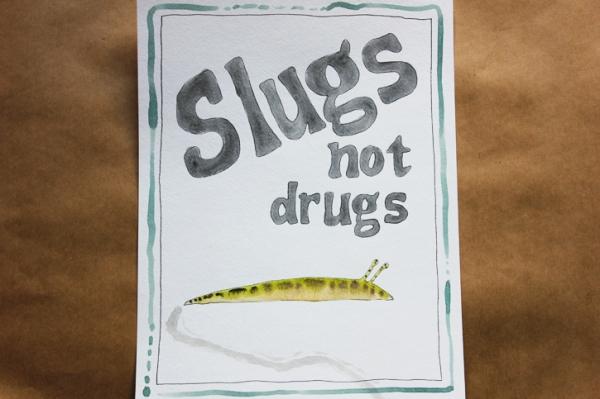slugs not drugs