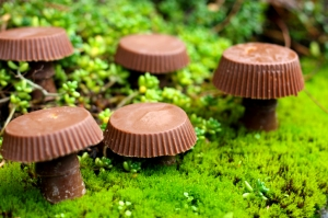 reese's and rolo mushrooms