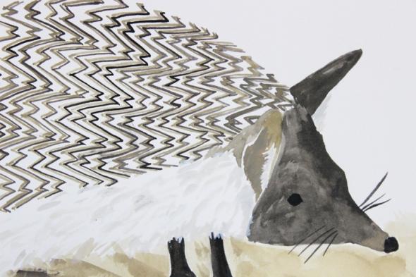 desert hedgehog detail