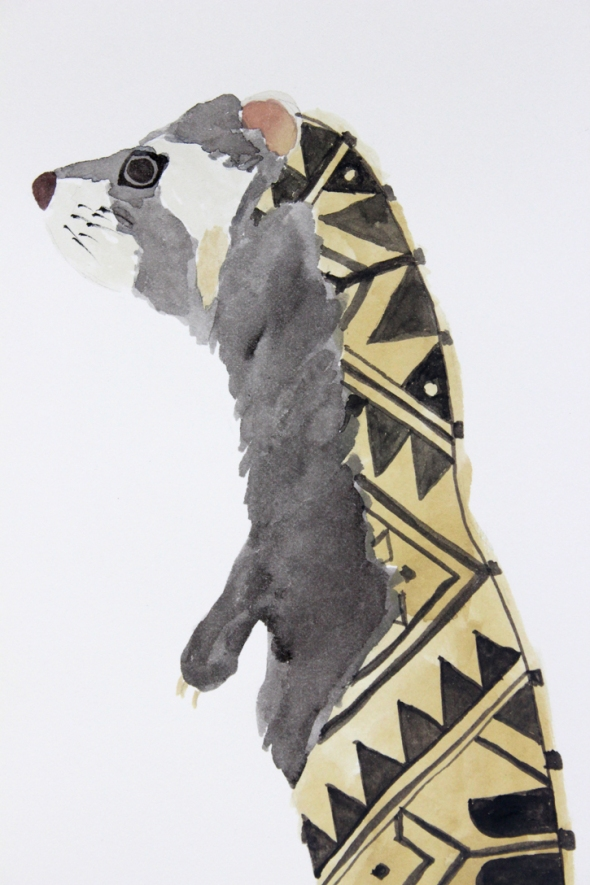 marbled polecat detail