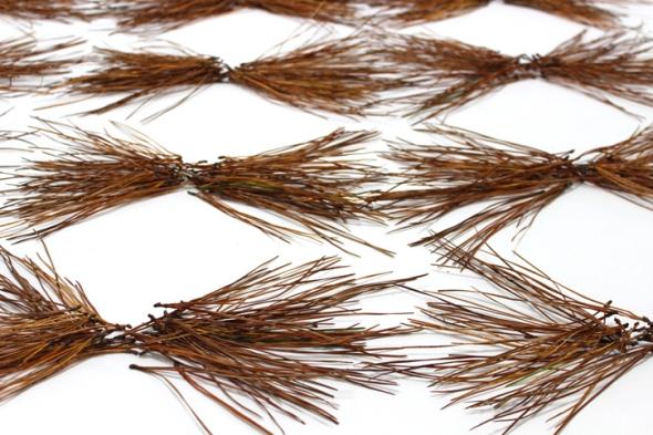 bow tie pine needles