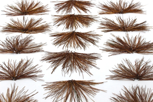 pine needle fans