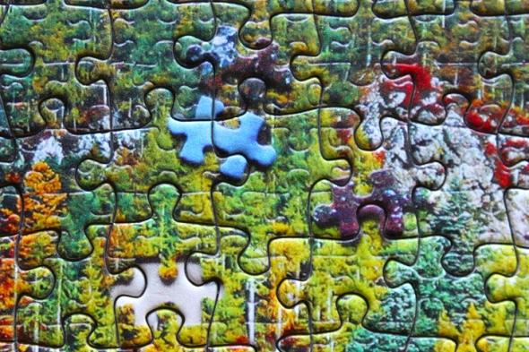 puzzle puzzle detail