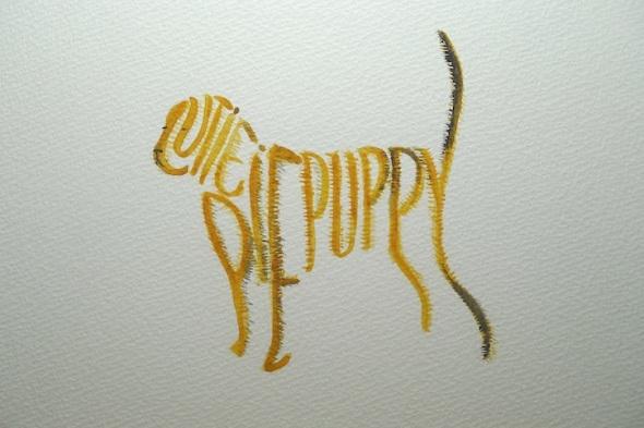 cutie pie puppy