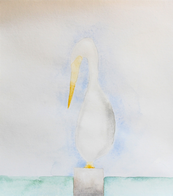 pelican watercolor