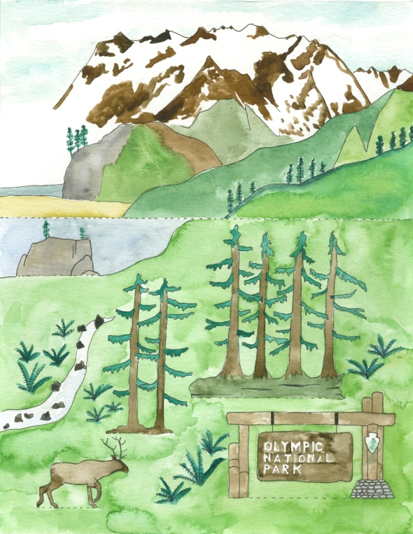 Olympic National Park mini poster