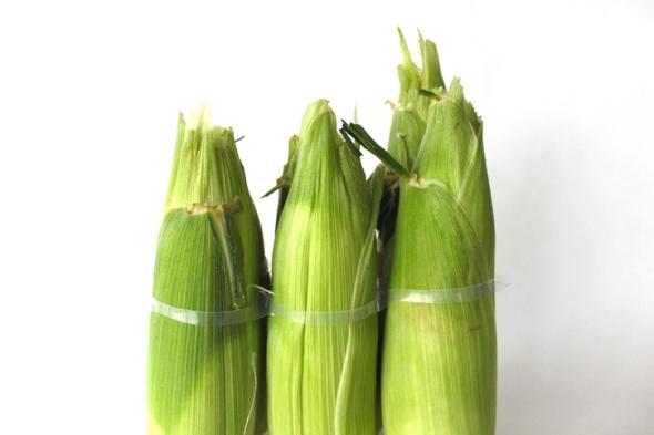 corn six pack